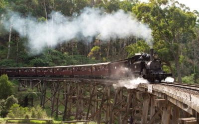 Victorian Government delivers formal apology to survivors of Puffing Billy